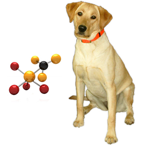 Chelated Minerals in Dog ...</p><a class=