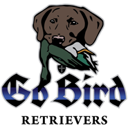 Go Bird Retrievers Logo