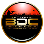 Bird Dog Circuit